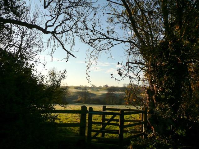 Helen Bailey, South Wraxall, 27th November 2013